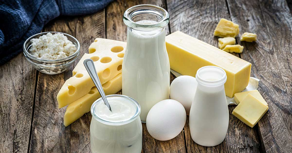 a bunch of dairy products
